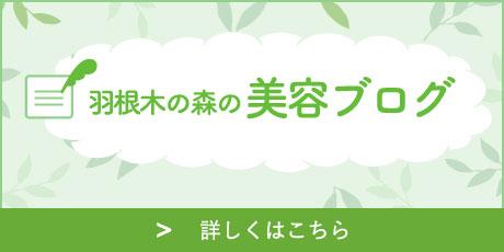 羽根木の森の美容ブログ