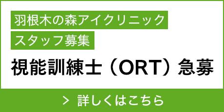 視能訓練士(ORT)急募